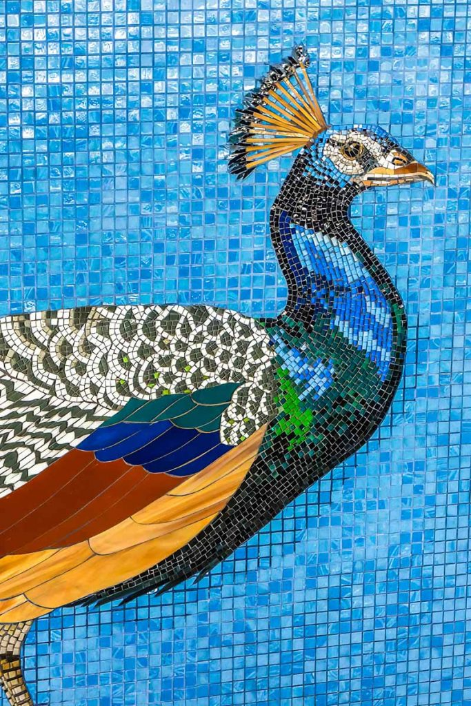 Peacock Water Wall Mosaic 3m stained glass mosaic. Private commission - Burnside