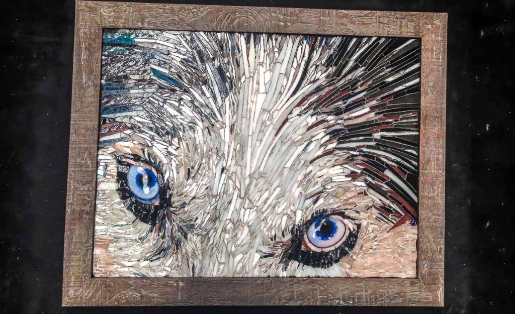 Husky Eyes. Susan Woenne-Green's second commission